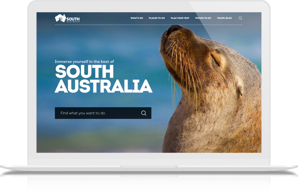 South Australia web development